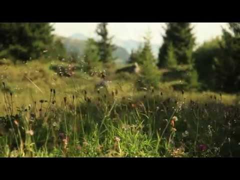 Der Parc Ela - Im Herzen des Graubünden