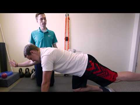 bird-dog-low-back-exercise---provo-chiropractor