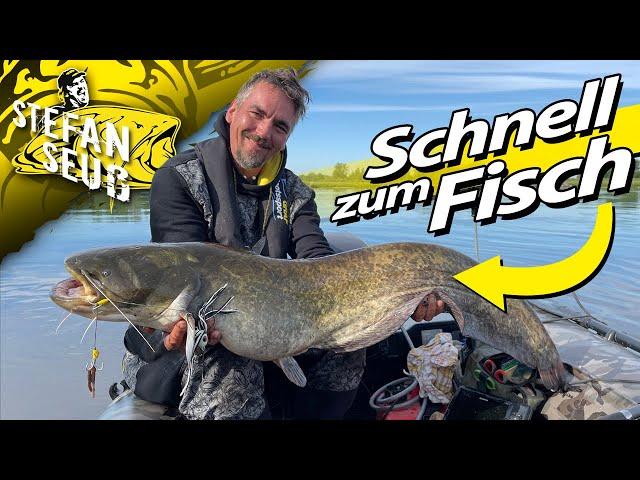 SCHNELL zum FISCH | KLOPFEN wirkt WUNDER | Erfolgreich WELSANGELN mit Wallerholz, Teaser und Wurm