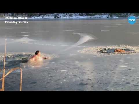 Man and his dog rescue two dogs trapped in an icy New York lake