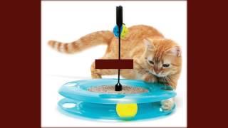 интерактивные игрушки кошки и собаки