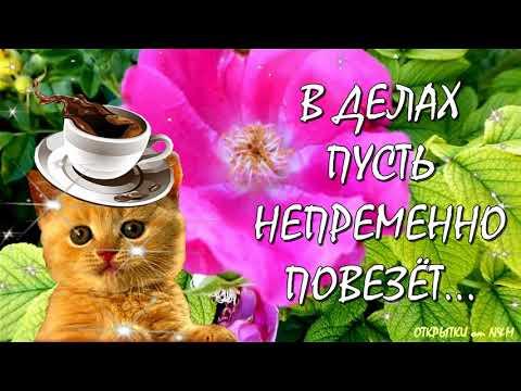 🌹Красивое Пожелание Доброго Утра! Открытки Доброе Утро! Удачной и Лёгкой Среды