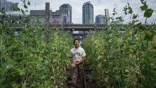 Vancouver urban farm combines agriculture with social goals
