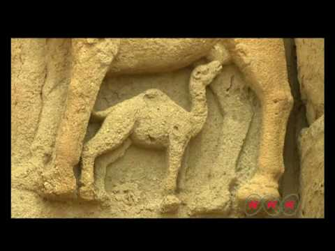 Hatra (UNESCO/NHK)