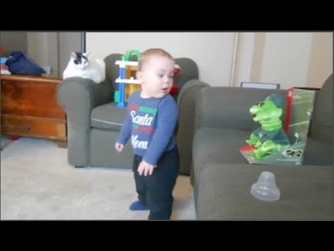 Funny Baby Dancing Moments -  Funny  Babies Dancing Compilation 2019 -  Youtube