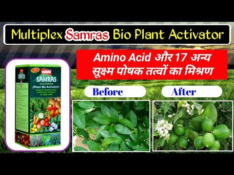 samras-|-multiplex-samras-|-plant-bio-activator-|-amino-acid-|-समरस-टॉनिक