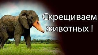 Скрещиваем животных ! ( Hybrid Animals )