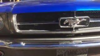 1964 1/2 Ford Mustang Walk-Around