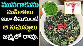 మునగాకు మహిళల ఆరోగ్యానికి దివ్యౌషధం..! | #Drumstick Leaves | Benefits - Health Tips in Telugu