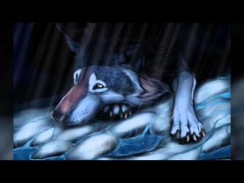 Волки. Песня: Прости...