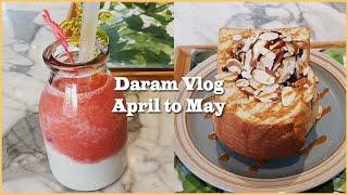 [Vlog] 4월 - 5월 일상  맛있는 거 잔뜩 먹기…