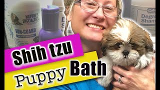 How to Bath and Dry a Puppy | #ShihTzu #puppy