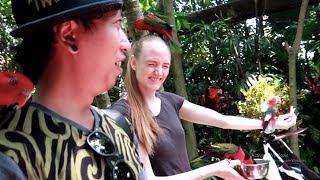 Download Video ISTRI PEGANG BURUNG?? - BALI BIRD PARK MP3 3GP MP4