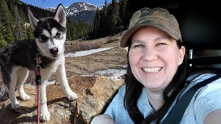We Found SNOW for the Husky Puppy | Travel Vlog