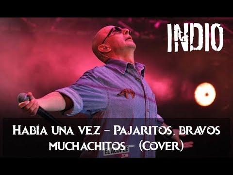 Había una vez - Indio Solari - Cover Instrumental (karaoke)