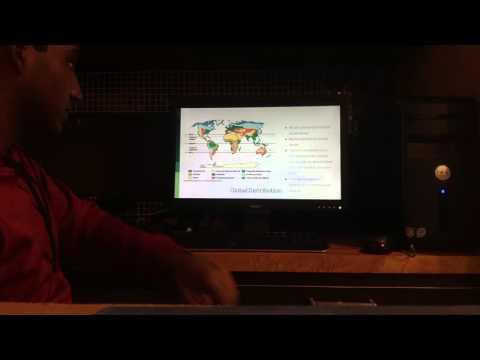 Rhizopus - Vivek Pillai A3 AP Biology Lau Cladogram Project