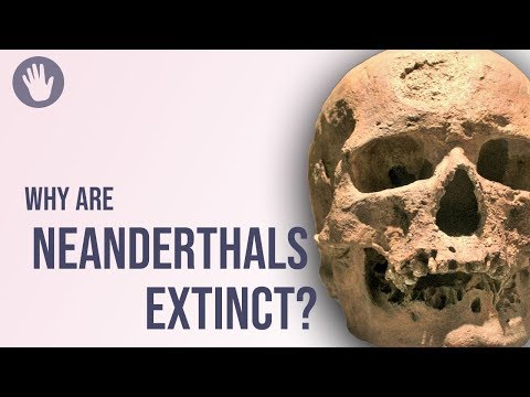 Why Are Neanderthals Extinct?