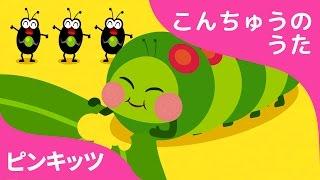 はらぺこイモムシ | Hungry Caterpillars | こんちゅうのうた | ピンキッツ童謡