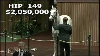 2012 November Breeding Stock Sale - Hip 149, Zazu
