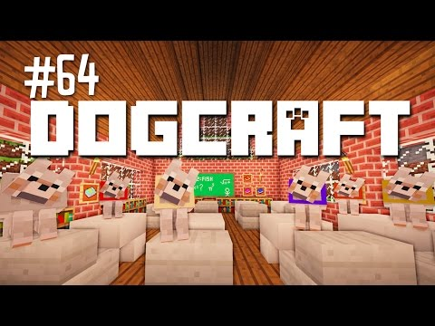 THE REPORT CARD - DOGCRAFT (EP.64)