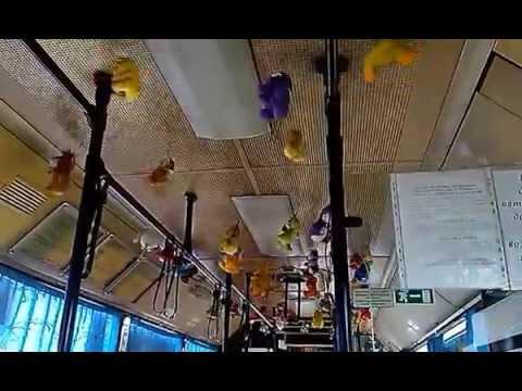 Автобус в Перми