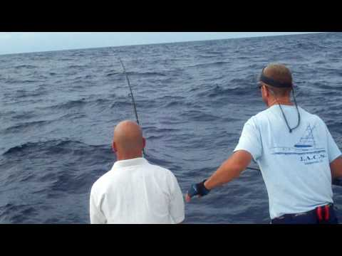 Holiday Isle Resort & Marina Extreme Offshore Fishing. Huge Bull Dolphin-Mahi mahi
