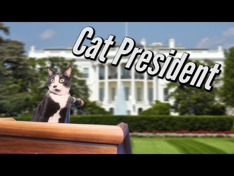DJ Nibbles Cat President ~A More Purrfect Union~ [Live Stream]