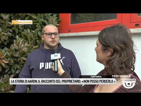 TG BASSANO (24/04/2019) - LA STORIA DI AARON, PARL...