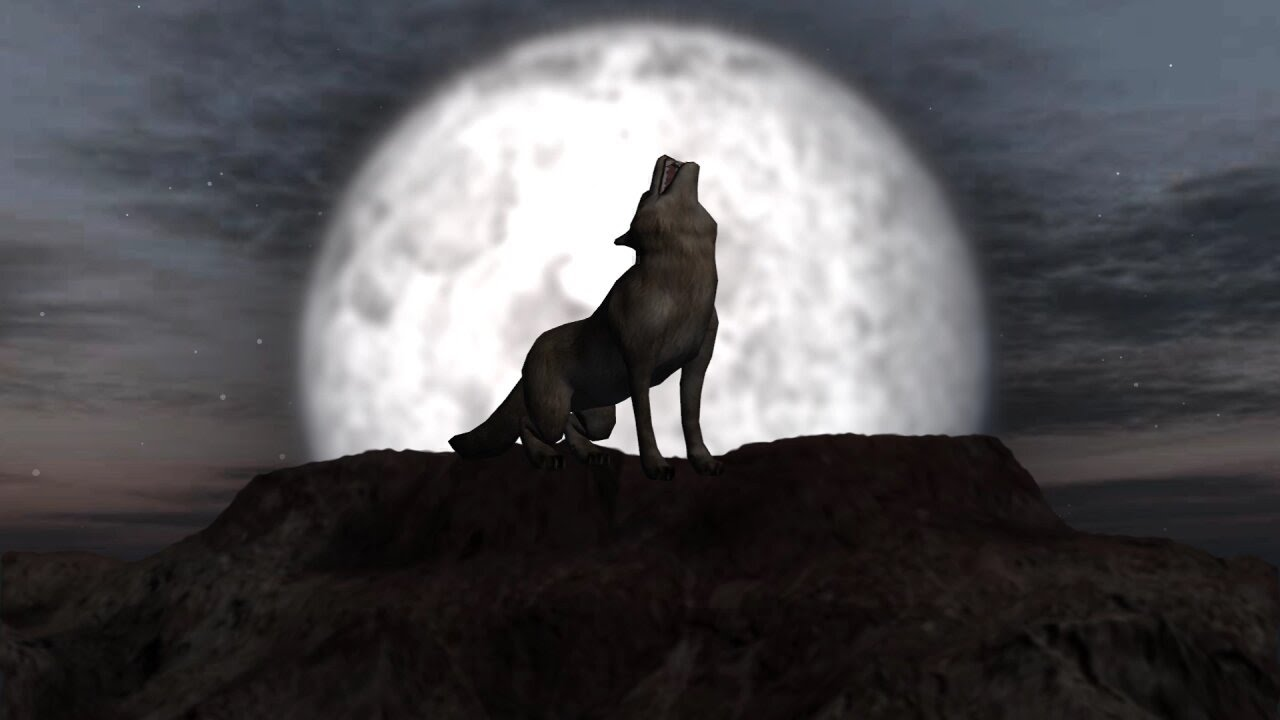 wolf howling  full moon individual elements  green
