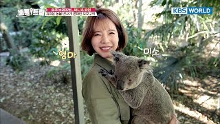 Cute Koala cuddled up in Sunny's arms [Battle Trip/2017.10.22] thumbnail