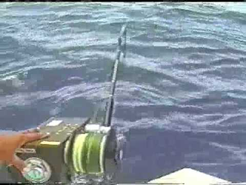 Kristal Fishing Reels - Fishing the Bahamas - YouTube