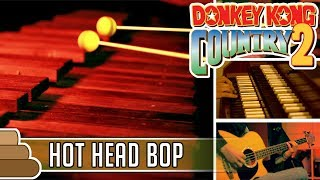 David Wise - Hot Head Bop [Donkey Kong Country 2]