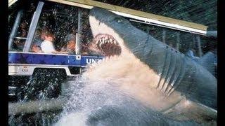 jaws attacks tram at universal studios hollywood