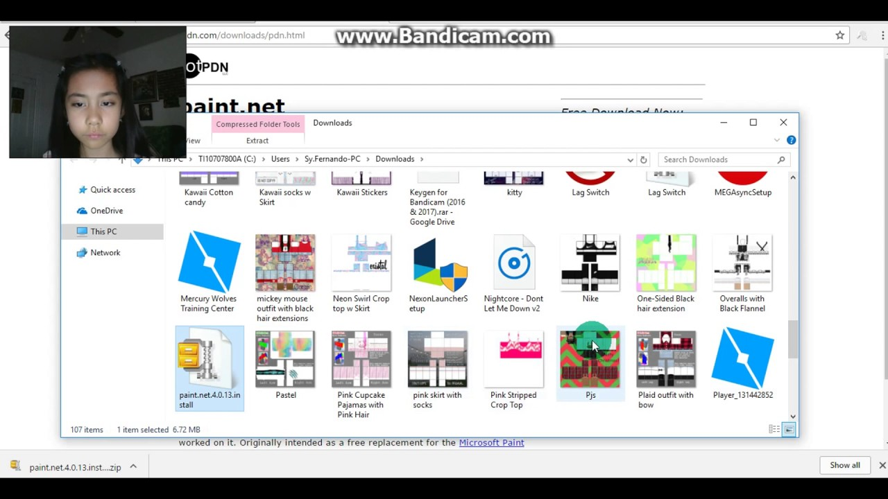 How to download/Install Paint NET