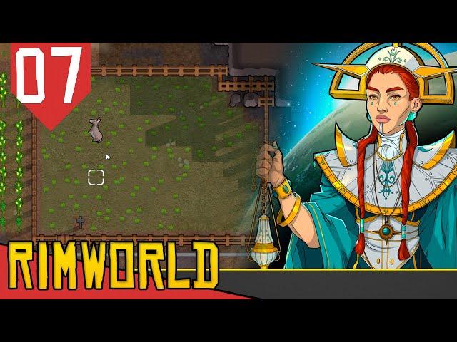 Conversões e o BURRINHO - Rimworld Ideology #07 [Gameplay PT-BR]