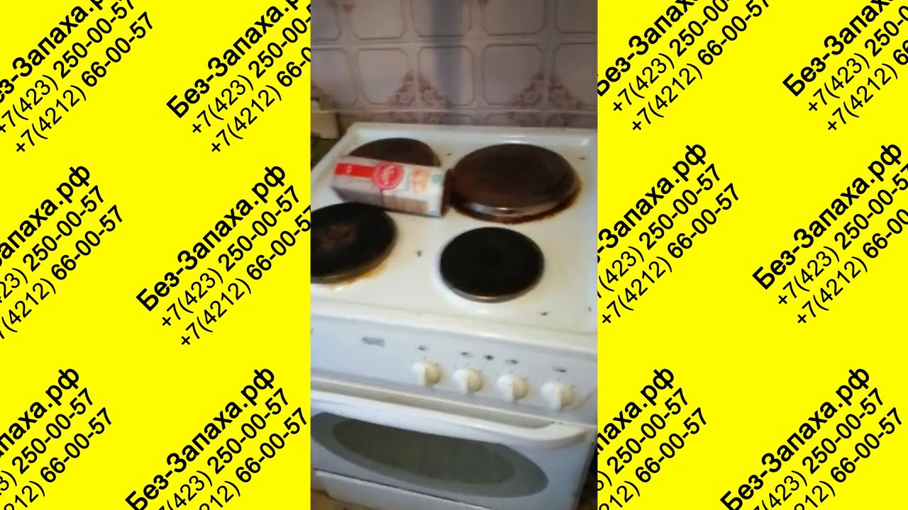Уничтожение постельных клопов в Ногинске 8 903 002 82 30 www .