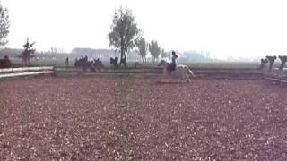 Marieke paardrijden