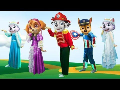 Descargar Video Family Paw Patrol Captain America   Finger family song