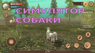 Симулятор собаки Детский летсплей / Dog Simulator #1/ Детские игры / Развлекательное видео для детей
