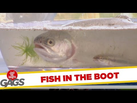 Surprise Fish Comes Out of some Boot!