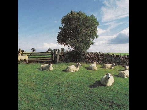 THE KLF  -  Chill Out  ( Full Album ) mp3