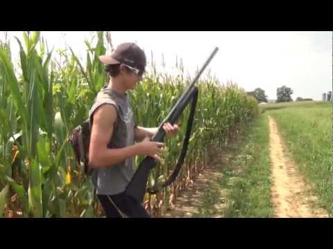 Dove Hunting Pennsylvania 2012 Opening Day