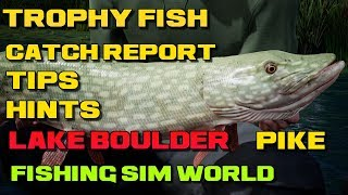 Fishing Sim World Lake Boulder Trophy Northern Pike 25lb Location & Catch Report