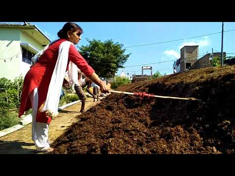 Button Masroom Farming In Lalganj Vaishali By Manorma Singh