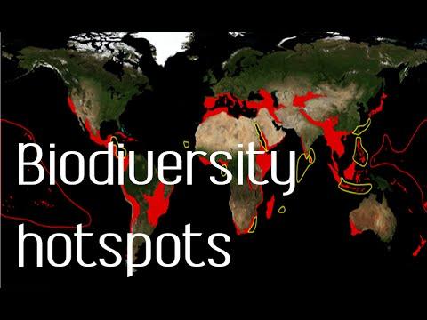 Biodiversity hotspots | biodiversity conservation