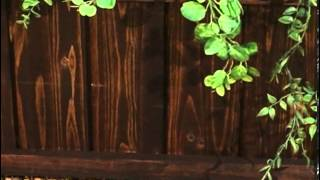 Coral Coast Rectangular Cedar Aster Patio Planter Dark Brown Stained - Product Review Video