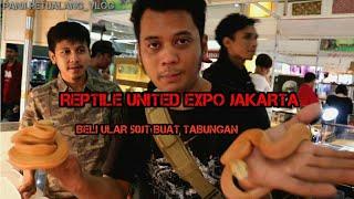 BELANJA ULAR DI REPTILE UNITED EXPO JAKARTA