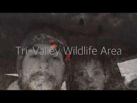 Tri-Valley Wildlife Area ( Muskingum County )