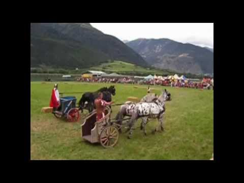2008 Corsa delle bighe Run of the chariot in Sluderno  Italia