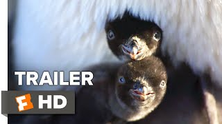 Penguins Trailer #2 (2019) | Movieclips Indie